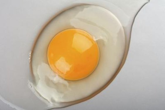 Image result for raw eggs