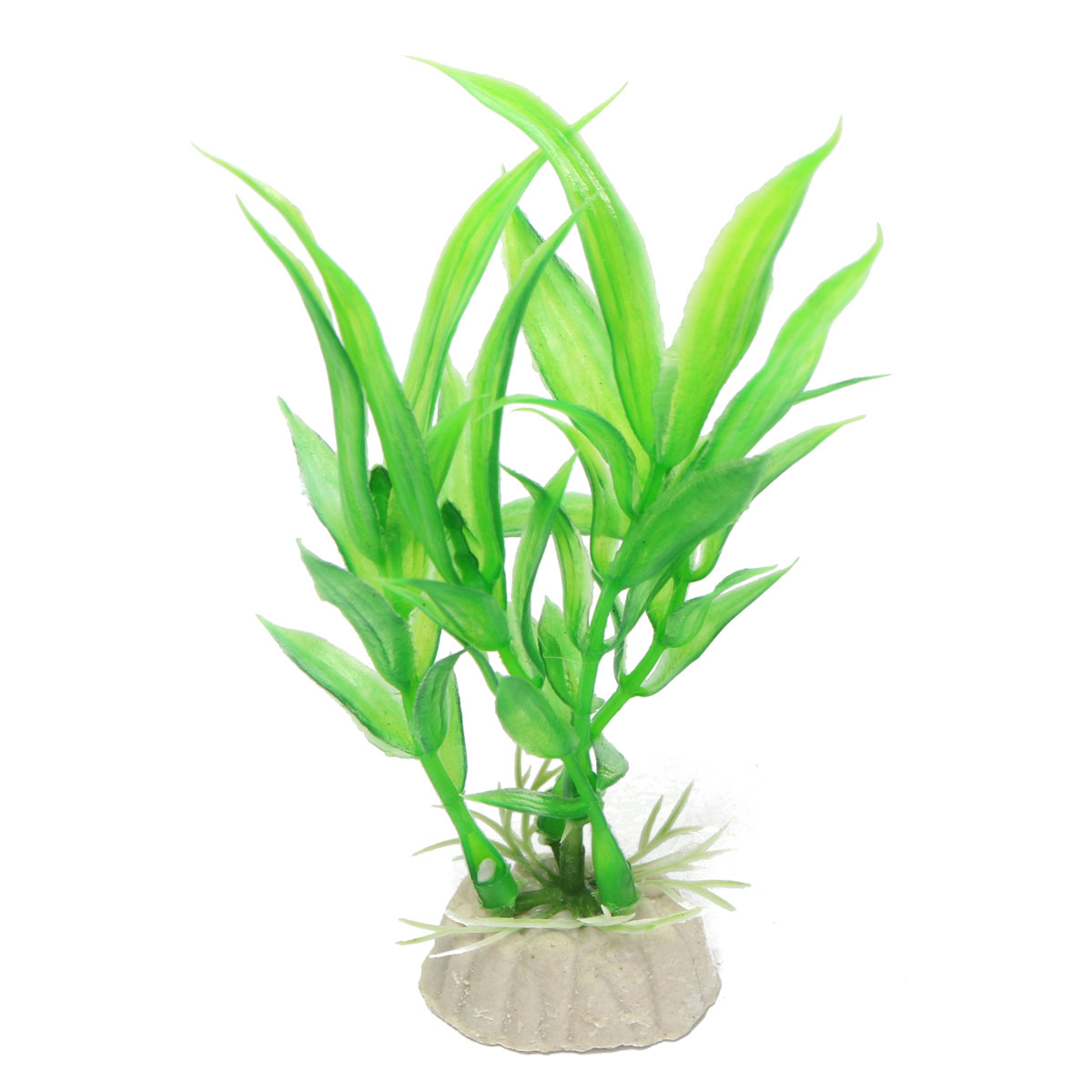 Aquatic Plants Canada