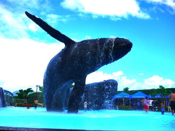 【國立海洋生物博物館外】飛躍吧。鯨魚