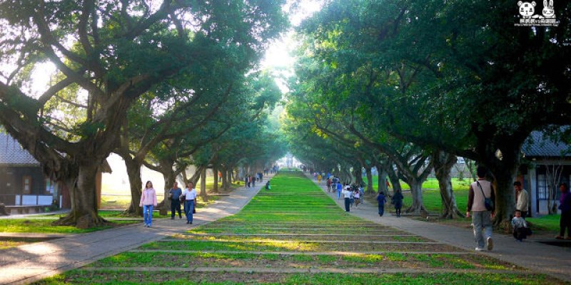 【東海大學】漫步綠廊走入神秘的日式國度