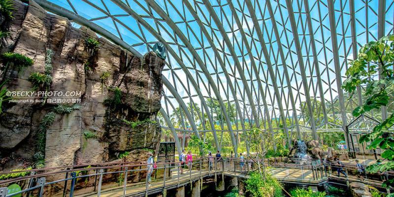 【台北】。動物園新地標!穿山甲熱帶雨林館+台北貓空纜車旅行