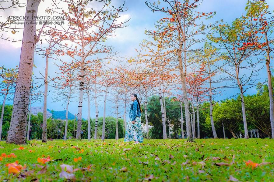 【新北】。三峽區賞櫻臺北大學心湖散步 台北木棉花開!