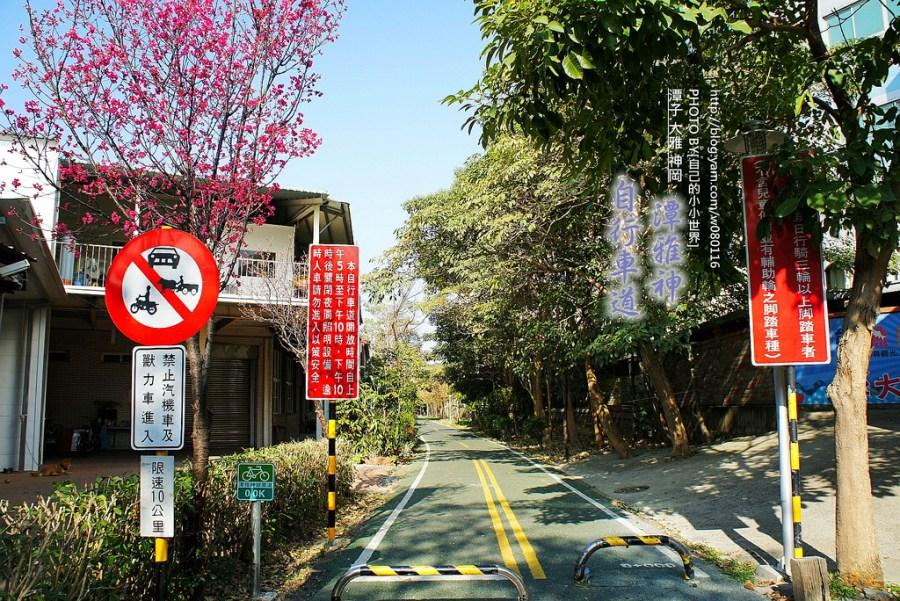 【台中】。繼東豐自行車綠廊後,第二個跨鄉鎮的「潭雅神綠園道」….. 在這裡撿到了波斯菊花海