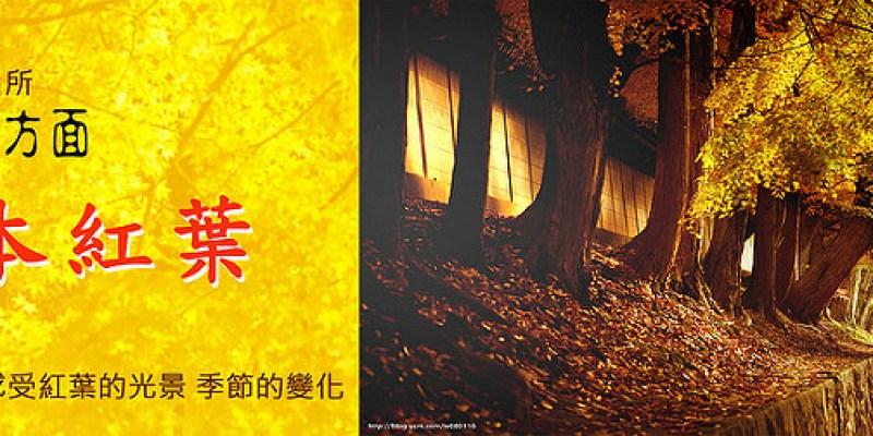 【日本】紅葉小旅行。大阪│京都│神戶6天日本自助行程