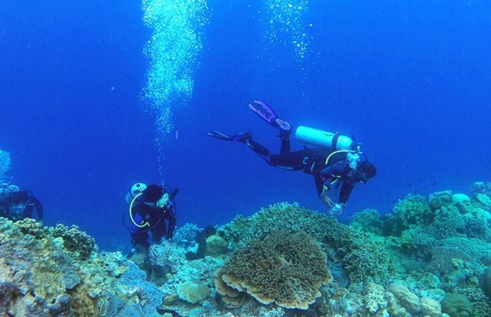 Indonesia To Show Off Its Coral Reefs And Underwater Landscapes In Malaysia