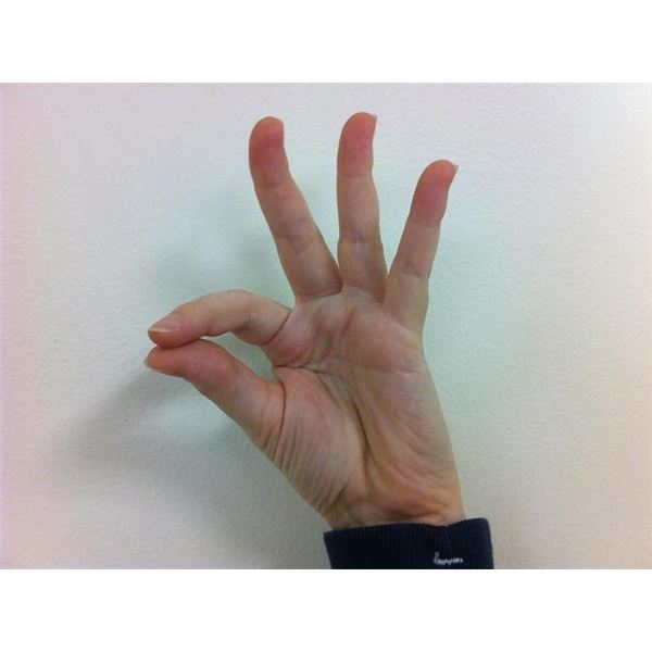Asl Fingerspelling Alphabet And The Linguistics Of Sign