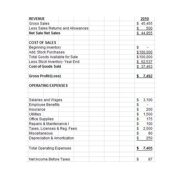Doc.#510738: Profit and Loss Statement Templates – Income ...
