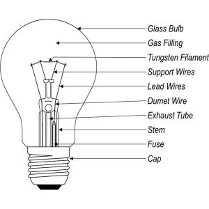 What are the Different Types of Light Bulbs