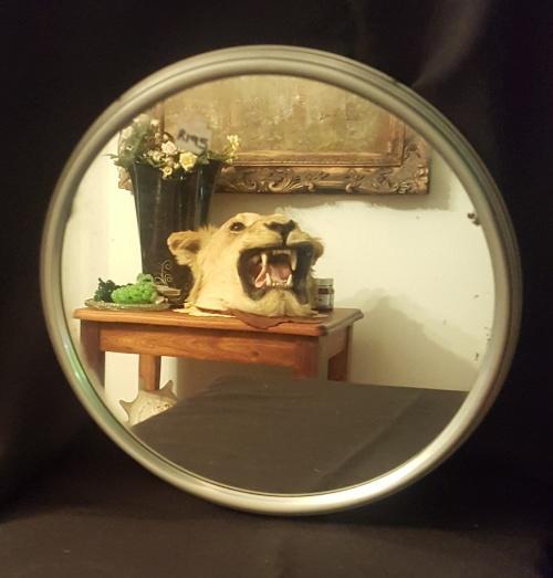 mirror 12