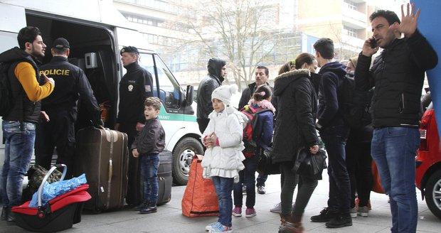 Do Česka přijela první uprchlická rodina ze Sýrie. Jde o rodinu s dospělými dětmi. (ilustrační foto)