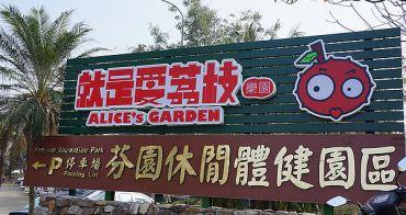 【彰化芬園親子景點餐廳】就是愛荔枝樂園 ALICE'S GARDEN - 適合消耗小孩體力.溜小孩的好地方啦XD
