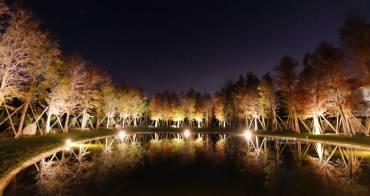 新竹關西│大樂之野景觀餐廳-落羽松包圍著愛心池塘.晚上多了唯美浪漫