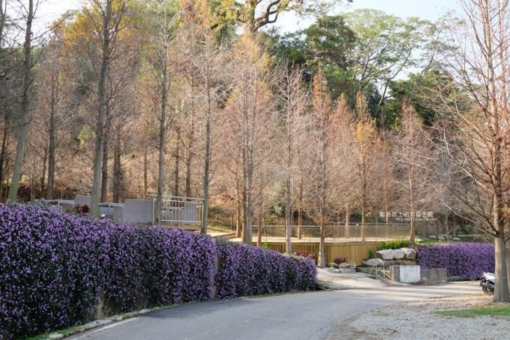 20190226144121 32 - 松之戀-近400株落羽松森林和湖岸景觀,賞櫻之後來份下午茶吧