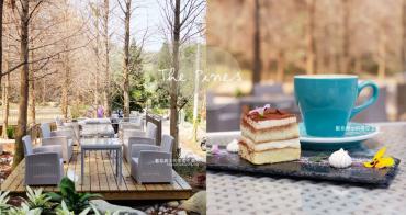 台中新社│松之戀-近400株落羽松森林和湖岸景觀,賞櫻之後來份下午茶吧