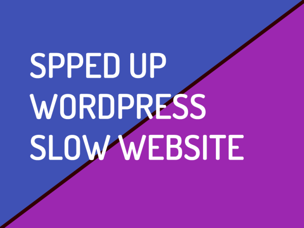 Speed Up WordPress Slow Website