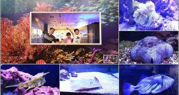 宜蘭礁溪親子景點 |  免費看數十種海洋生物無料水族館,餵食鯊魚、水草瓶DIY,都在金車生物科技水產養殖研發中心
