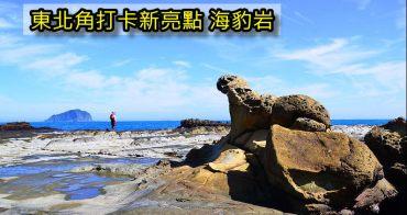 基隆東北角新秘境》八斗子大坪海岸驚見「海豹岩」,基隆最新爆紅景點(交通路線/注意事項)