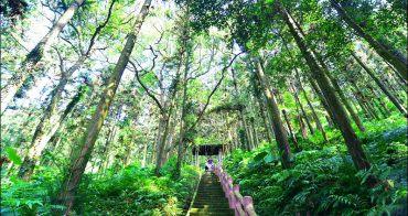 苗栗森林步道》鳴鳳古道 鳴鳳山森林遊憩區,大口呼吸芬多精、玩兒童山訓設施