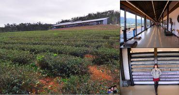 【苗栗新景點】山上喝茶看火車真有趣  銅鑼茶廠 ~台灣農林最新觀光茶園