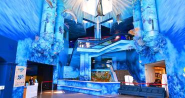 澎湖景點推薦「澎湖水族館」全新海底隧道、海星觸摸池、室內親子景點(門票.交通資訊)