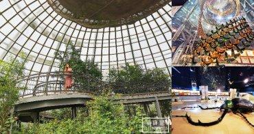 嘉義親子景點》新嘉大昆蟲館. 溫室蝴蝶花園、旋轉彩蝶柱、巨大昆蟲模型. IG打卡熱點