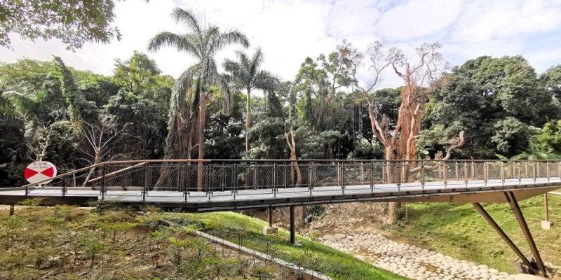 哈赫拿爾森林。森林河谷綠意,漫步在橋上 台南體育園區