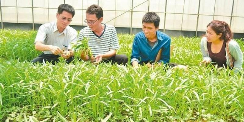 台南擬將有機蔬菜入營養午餐 難度高