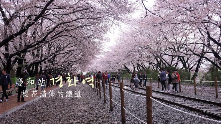 [韓國] 櫻花滿佈的慶和站,鎮海賞櫻第二站