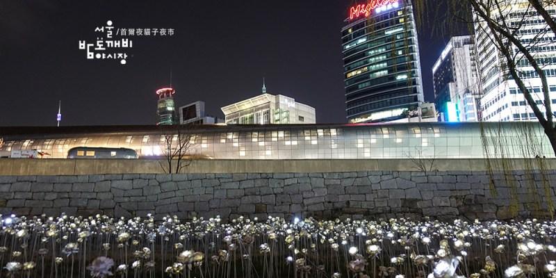 [韓國] 東大門夜貓子市集,首爾也有夜市可以逛啦,DDP玫瑰花海與夜景