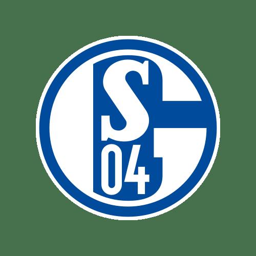 S04 1 - The Ultimate Bundesliga Fan Guide! Pick a new favorite team!
