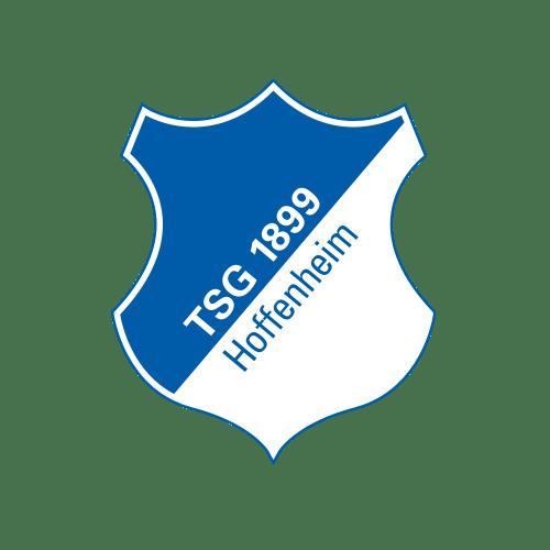 TSG 1 - The Ultimate Bundesliga Fan Guide! Pick a new favorite team!