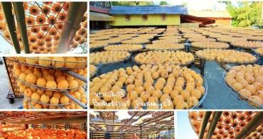 『新竹拍照景點』2017季節限定色!味衛佳柿餅農場,免費練拍的好場景~