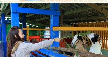 『牧場咖啡』宜蘭水鹿咖啡,是咖啡店也是牧羊場!