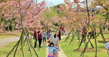 台中櫻花季   后里崴立機電粉紅櫻花風暴,千坪櫻花園免費參觀拍照!