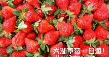 苗栗採草莓一日遊 | 大湖草莓季可以這樣玩 ! 採草莓、拍城堡、巧克力DIY玩不停!