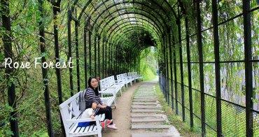 苗栗新景點 | 雅聞七里香玫瑰森林,浪漫歐式玫瑰花園、香氛步道美到讓人無法忘懷~