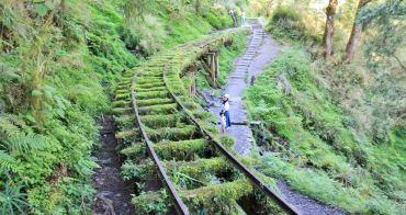 宜蘭景點 | 此生必遊!全球最美小路見晴懷古步道,絕美綠之森林鐵道~