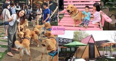 台中景點》獵犬不打獵!全台首家黃金獵犬寵物餐廳,11隻狗狗超療癒,放假來這被包圍~