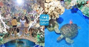 澎湖景點》太夢幻!大義宮珊瑚海底王國,唯一合法養海龜的藍色海底世界~