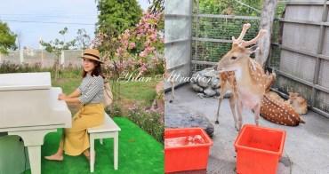 宜蘭新景點》親近小動物必收藏 !五十二甲休閒農場貼近大自然,餵梅花鹿、小山羊好好玩~