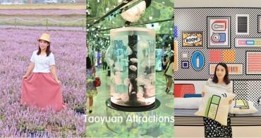 桃園景點》楊梅仙草花節一日遊,網美+親子路線推薦、水生公園、仙草花海、森林鳥花園一次分享~