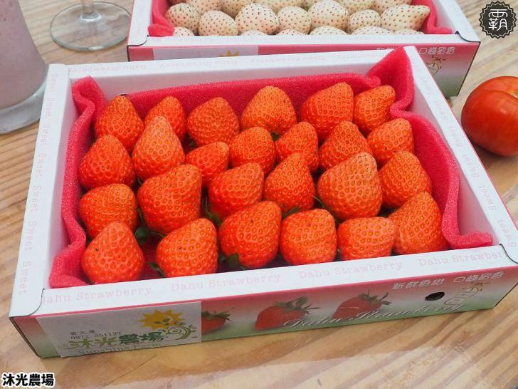 20190405225459 76 - 白草莓、水蜜桃草莓好特別!沐光農場,溫室高架草莓園,採草莓超舒適!