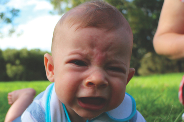 The Reasons My Kid Is Crying Book Is Freaking Hilarious