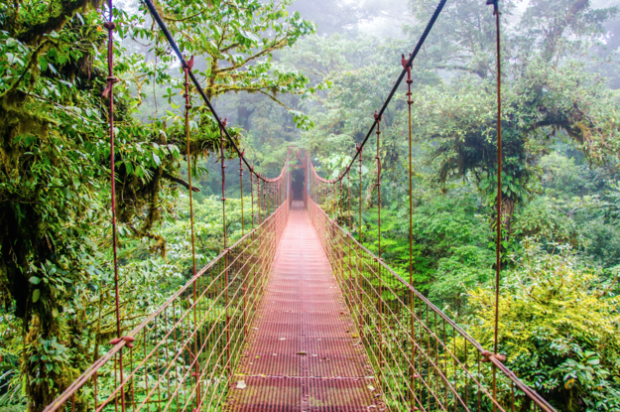 Hanging Bridges in Arenal, Costa Rica