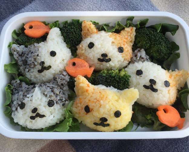 This kitty bento that was probably inspired by the kitty collector cookbook ($28)
