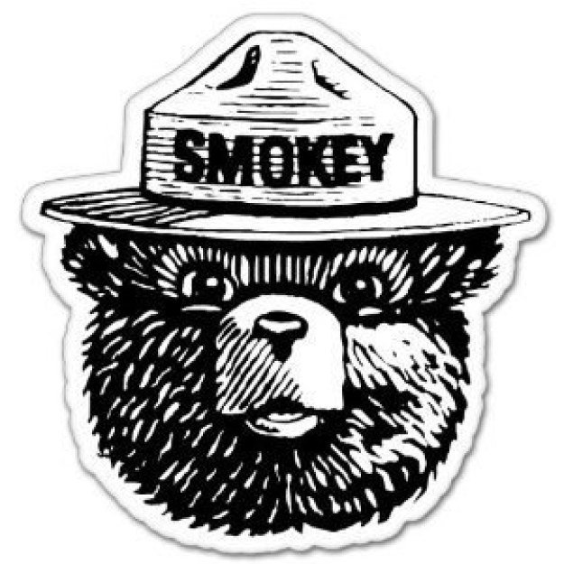 This Smokey the Bear sticker that will probably not have any impact on forest fire prevention TBH ($2.49).