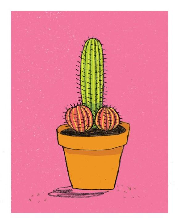 This sexy cactus print.
