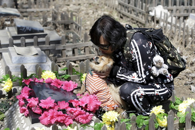 "The stories told to Reuters at Baifu Pet Cemetery on the outskirts of Beijing are just lovely. Qingqiu here is visiting the grave of Huoban (which means ""partner"" in English), her previous dog, with Huoban Jr, her current partner."