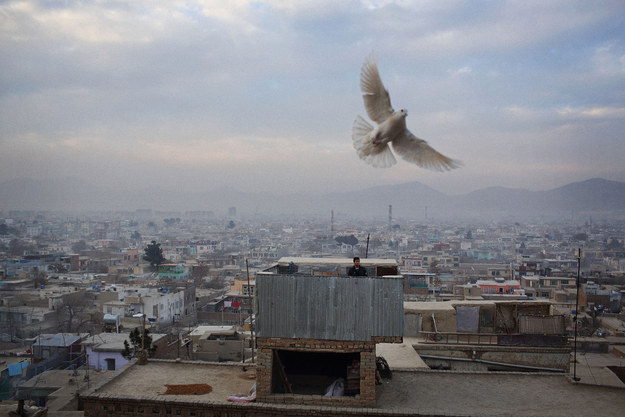 """These Haunting Photos Reveal Today's Afghanistan"" — Proof"