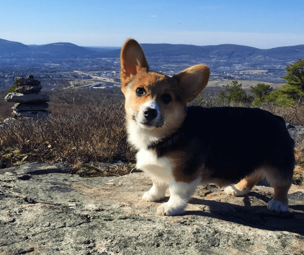 For starters, she's pretty much a professional hiker.